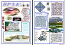保护环境电子小报――保护生态篇