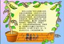 桂林山水电脑小报