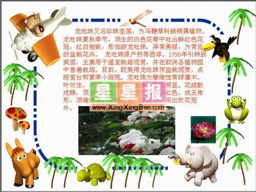 边框 小报/类别:电脑小报 学校:福隆乡欧阳村新榜小学版面设计:许...