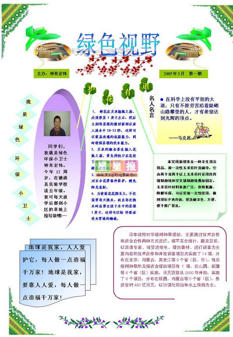 电脑小报素材_电脑小报模板雷锋_二年级电脑小报 .