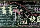 菁菁校园黑板报设计
