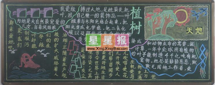 有关植树节的黑板报_有关于植树节的板报图片 - 星星报
