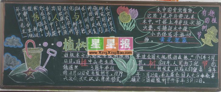 高中植树节黑板报作品