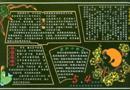 5.4青年节黑板报版面设计图
