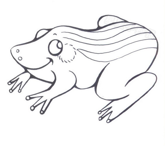 小青蛙简笔画