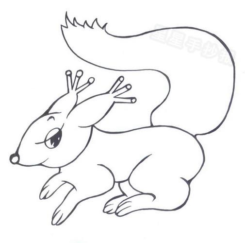 小松鼠简笔画