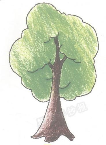 树的简笔画图片