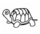 乌龟简笔画简单画法