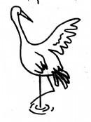 仙鹤简笔画