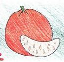 橘子简笔画怎么画