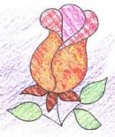 玫瑰简笔画
