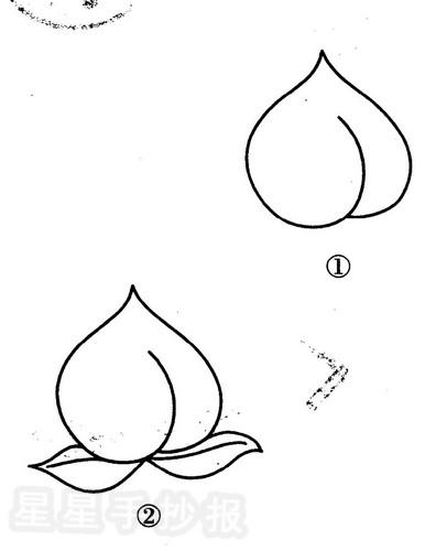桃子简笔画怎么画图片