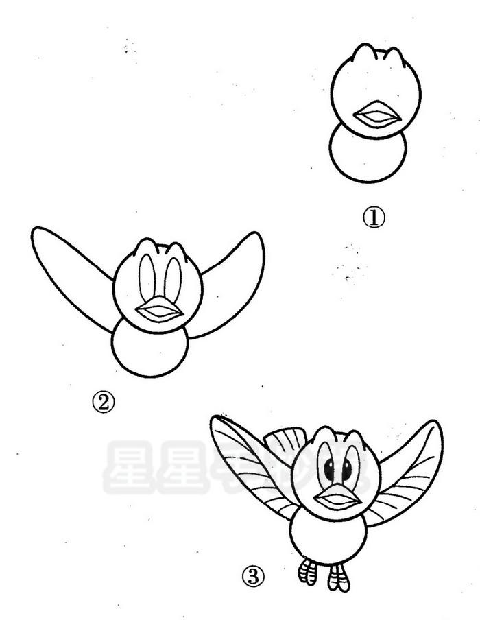 麻雀地笼图解_飞翔鸟简笔画
