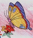 蝴蝶简笔画图片画法