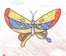 画蝴蝶简笔画