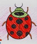 小瓢虫简笔画