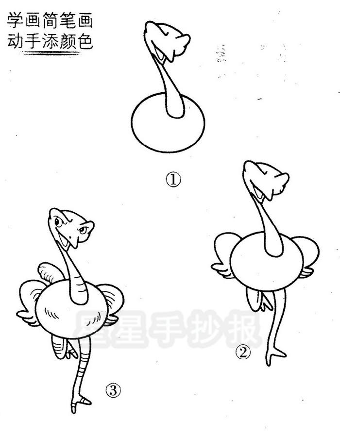鸵鸟简笔画图片
