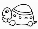 小乌龟简笔画