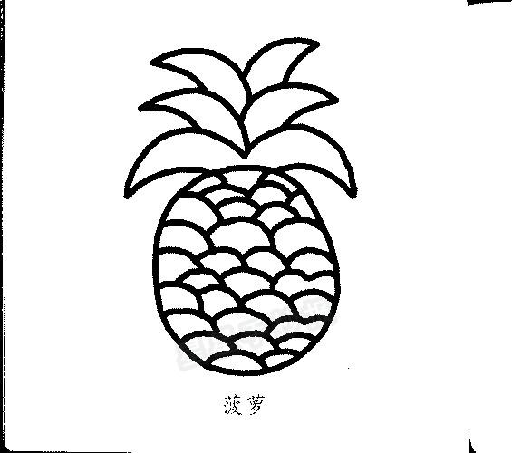 菠萝简笔画图片画法