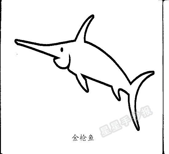 金枪鱼简笔画