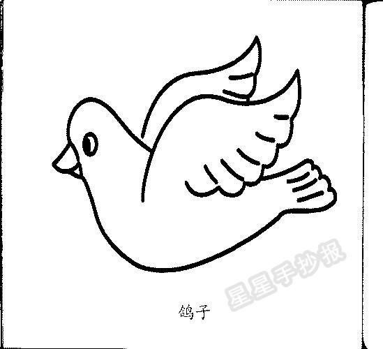 飞翔的鸽子简笔画一