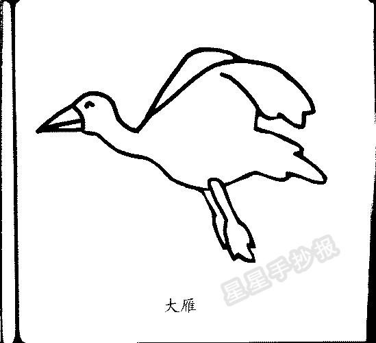 大雁简笔画简单画法