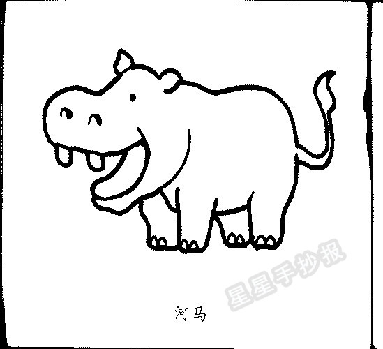 河马简笔画图片画法