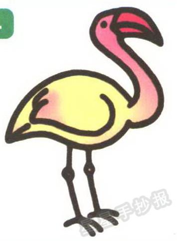 红鹤 火烈鸟 简笔画