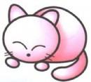 猫简笔画怎么画