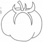 西红柿简笔画怎么画