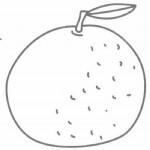 橘子简笔画简单画法