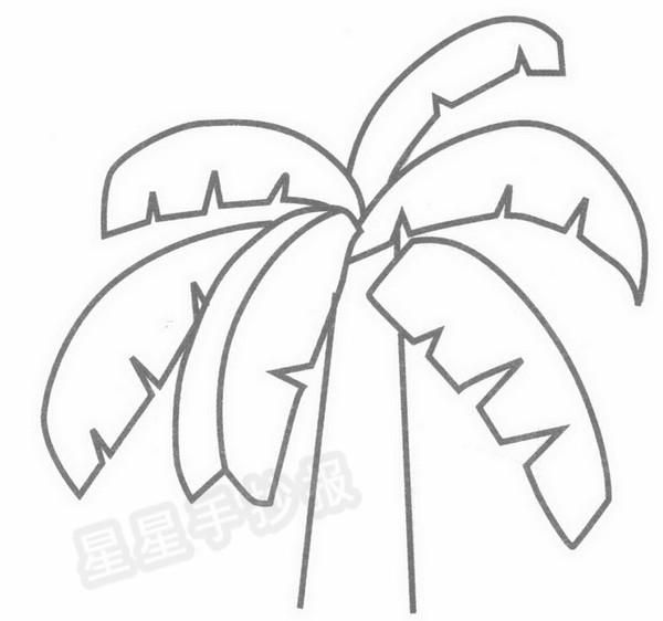 芭蕉树简笔画图片