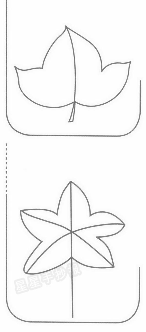 枫叶简笔画示例图片