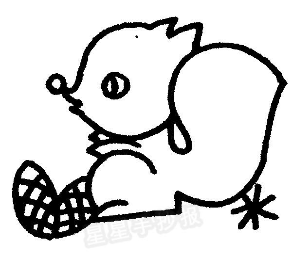 松鼠简笔画图片画法