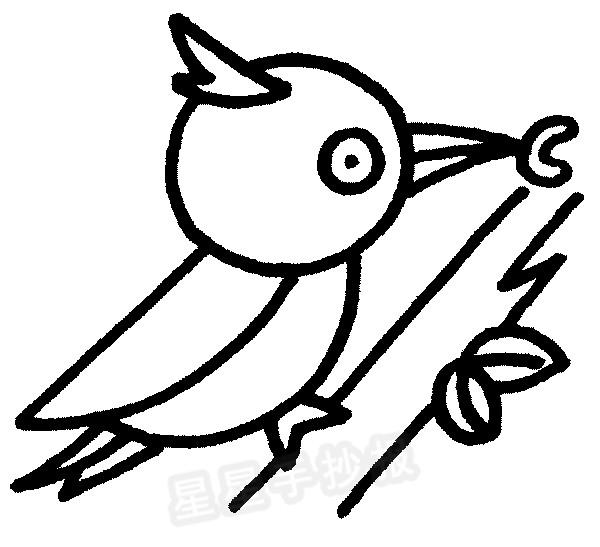 啄木鸟简笔画简单画法