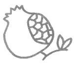 石榴简笔画简单画法