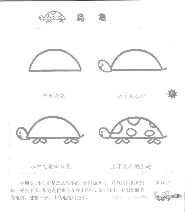 乌龟简笔画图片步骤教程