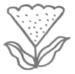 鸡冠花简笔画图片画法
