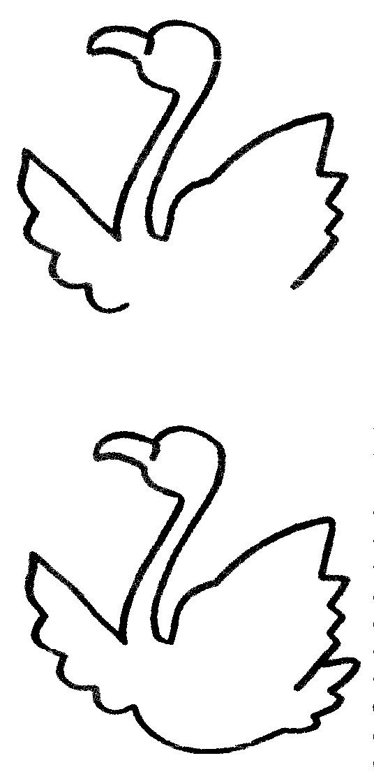 火烈鸟简笔画怎么画