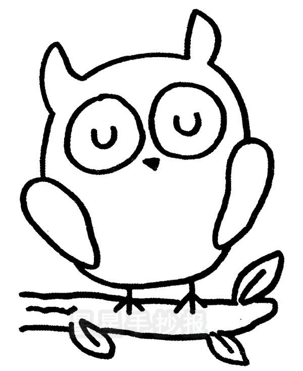 简单的猫头鹰简笔画