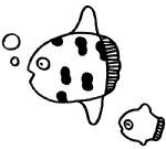 热带鱼简笔画图片步骤教程