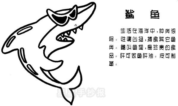 鲨鱼简笔画简单画法