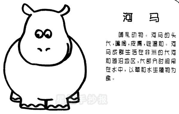 河马简笔画