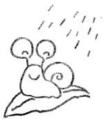蜗牛简笔画图片步骤教程