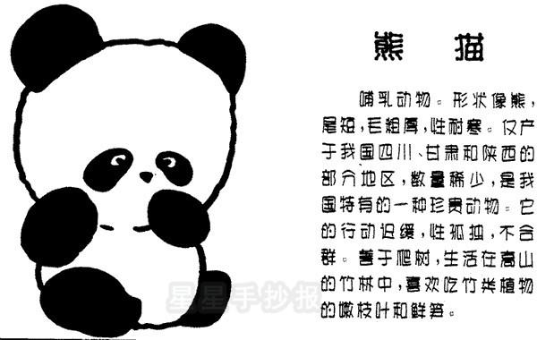 熊猫简笔画