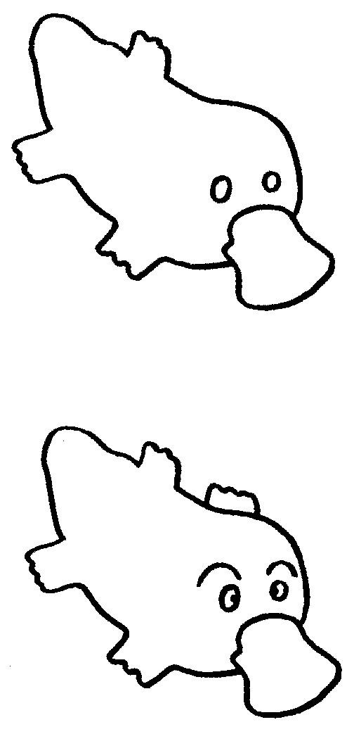 鸭嘴兽简笔画