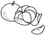 橘子简笔画图片画法
