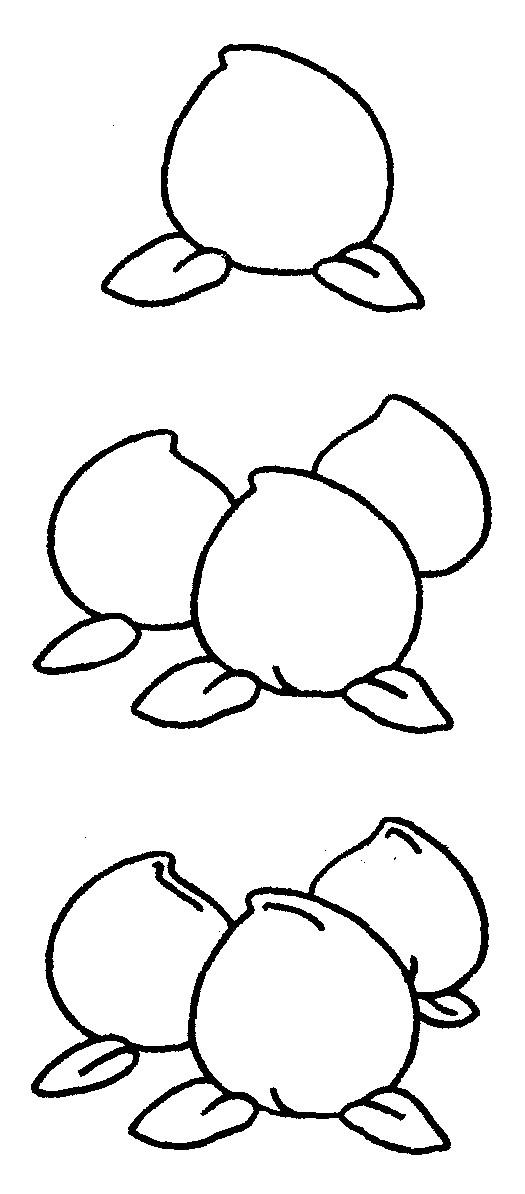 桃子简笔画图片步骤教程