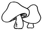 蘑菇简笔画图片步骤教程
