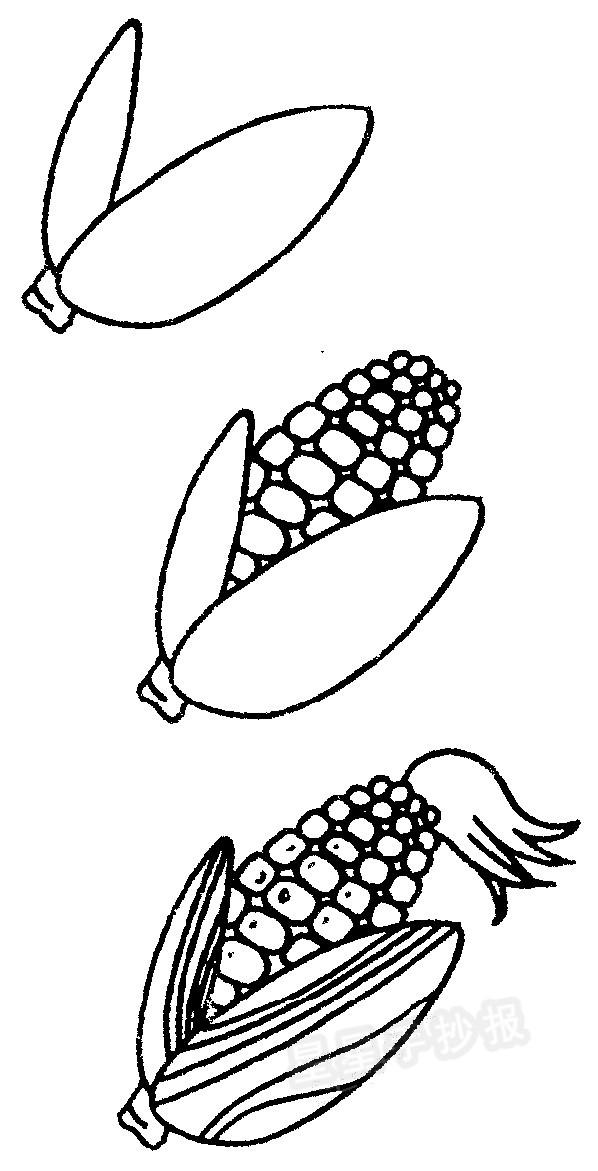 1串玉米简笔画图片_玉米简笔画图片步骤教程